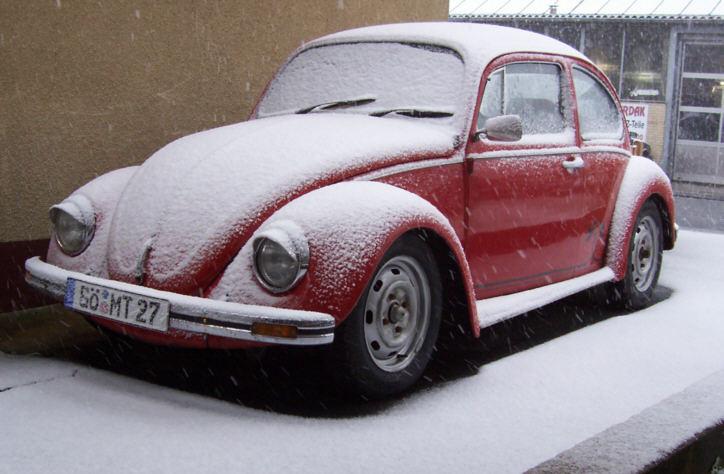 Kaefer mit Schnee